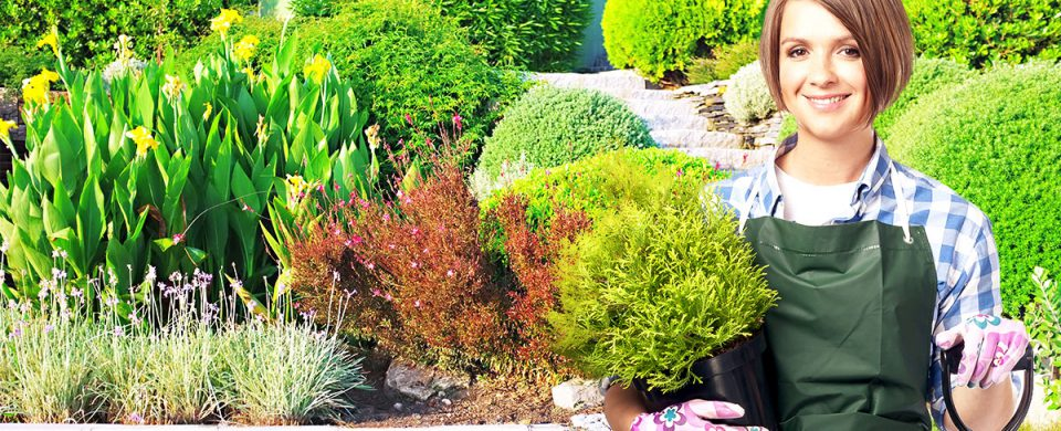 Make your home's exterior more beautiful with professional landscaping services in Toronto.