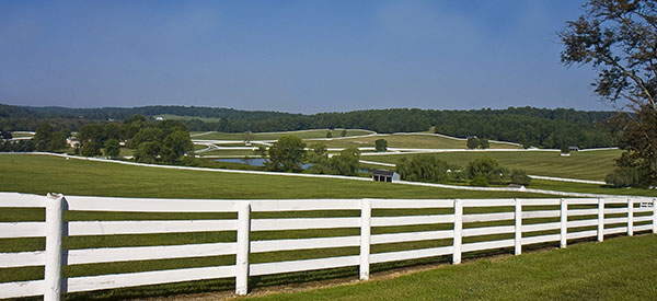 Mark the perimeter of your property and protect livestock with acreage or farm fencing.
